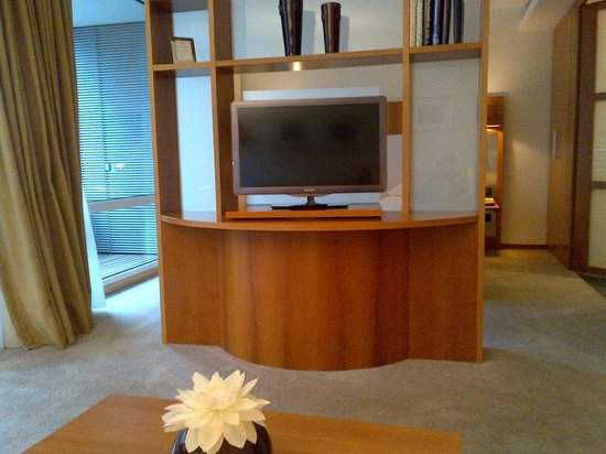 The Mandala Hotel : swivel TV