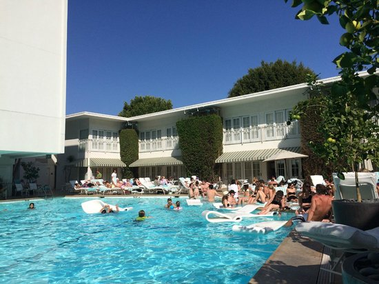 The Beverly Hilton : Great vibe poolside