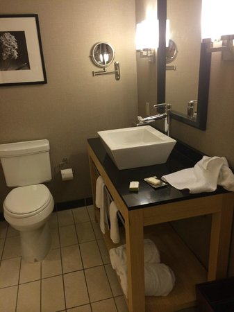 DoubleTree by Hilton Hotel Baton Rouge: Bath room