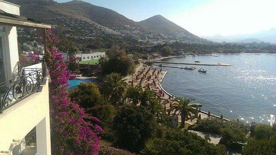 Kadikale Resort: View from the room