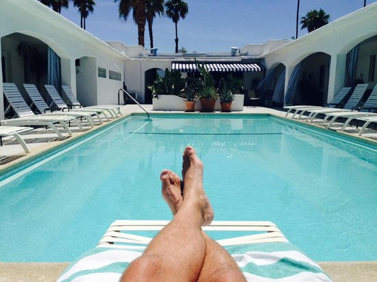 POSH Palm Springs Inn : Chill