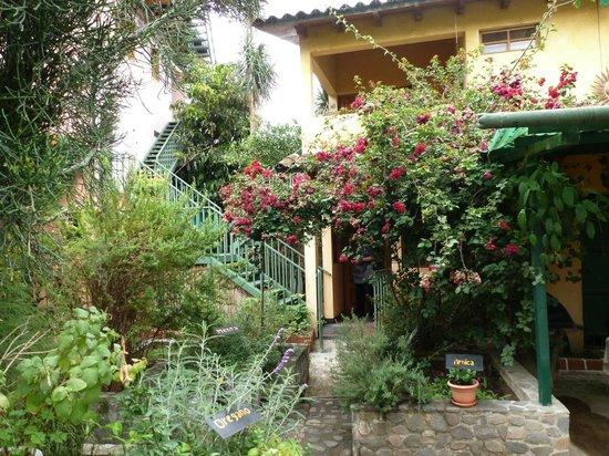 Posada Los Encuentros : Garden
