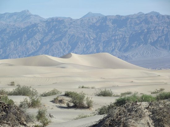 Stovepipe Wells Village Hotel: Sand Dunes