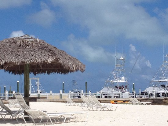 Abaco Beach Resort and Boat Harbour Marina: View from the beach