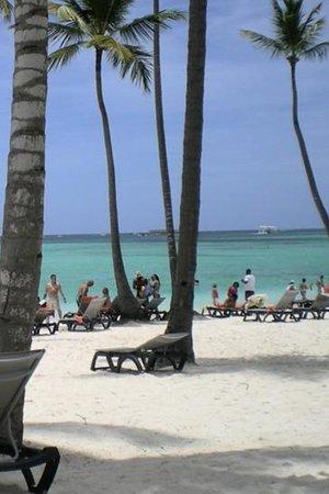 Barcelo Bavaro Beach - Adults Only: Love the beach
