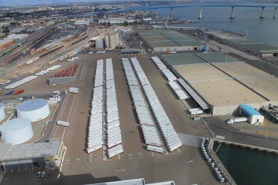 Hilton San Diego Bayfront : Dole Plant View