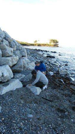 Rockland Breakwater Light: Leftside beach