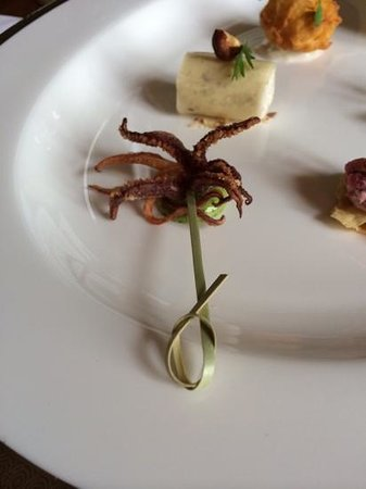 Llangoed Hall: squid