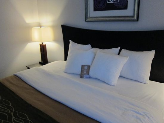 Comfort Inn & Suites: Very comfortable bed