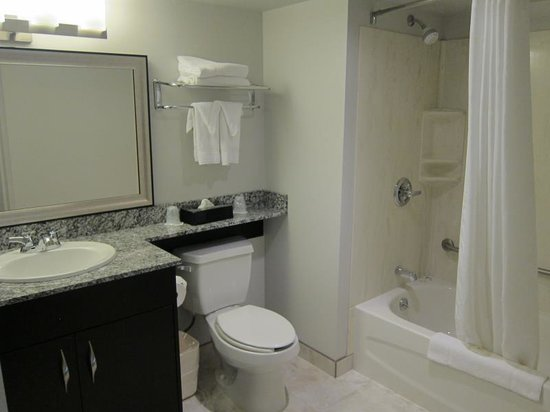 Comfort Inn & Suites: Good size bathroom