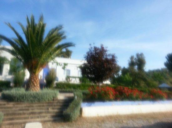 Casa Grande Casa Rural : vue du parc