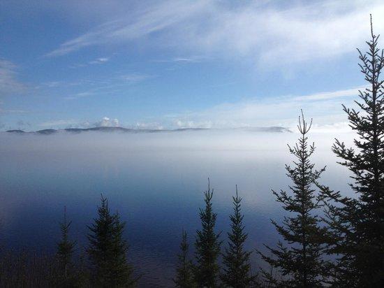 Auberge de la Riviere Saguenay : La vue de notre chambre a 7h le matin.