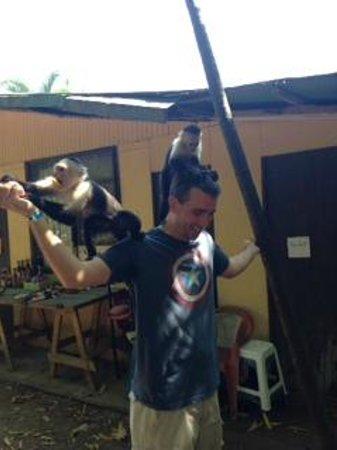 Tiquicia Tours: Feeding the monkeys