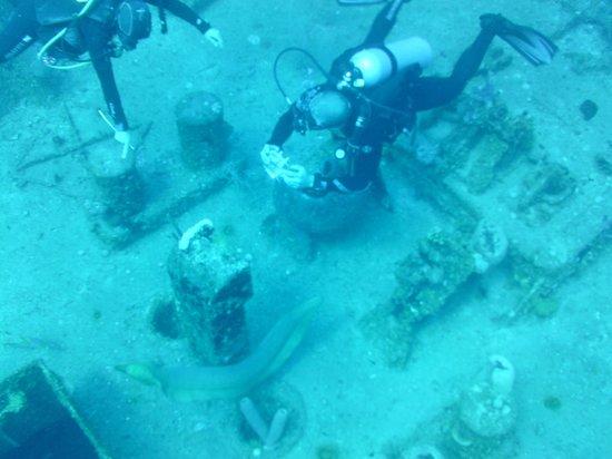 Infinity Divers Aqua Center : El Aguila