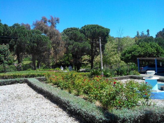 Casa Grande Casa Rural : parc