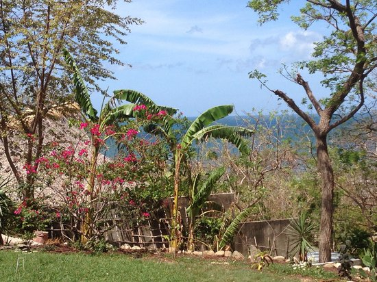 The Maderas Village: View from yoga platform