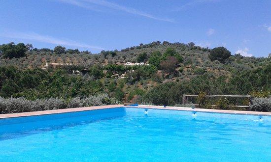 Casa Grande Casa Rural : vue de la piscine eau salee