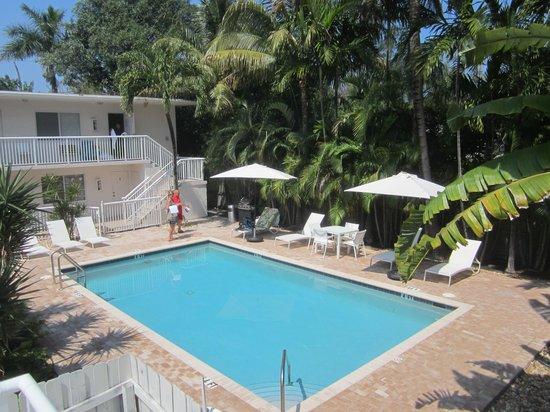 Cocobelle Resort: piscine dont la quiétude est assurée par la rangée de palmiers