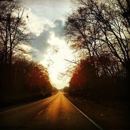 Natchez Trace Parkway: Lovely view on the Trace