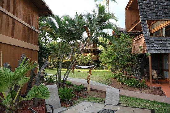 Hotel Molokai: Motel grounds