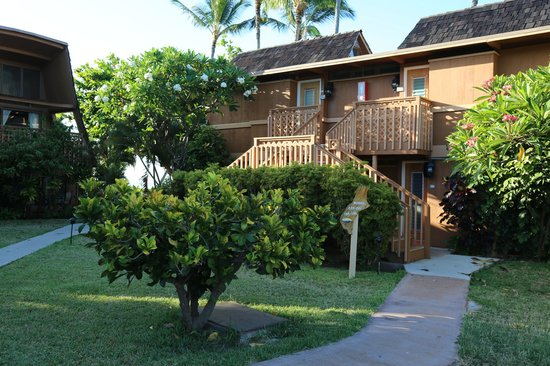 Hotel Molokai: Nihau rooms