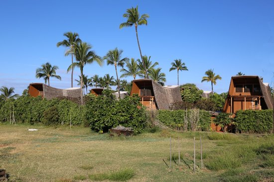 Hotel Molokai: Motel from east side
