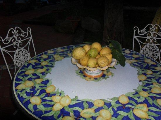 Villa Giovanna: Sorrento Lemons in hotel grounds