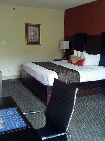 Best Western Plus Atlanta Airport-East : Room 510