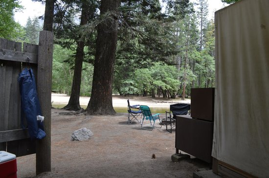 Housekeeping Camp: View from table in covered patio