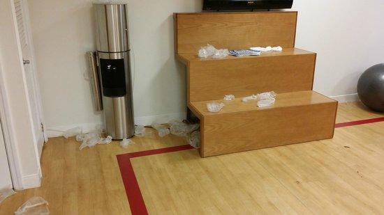 Radisson Hotel Hauppauge-Long Island: Fitness Room