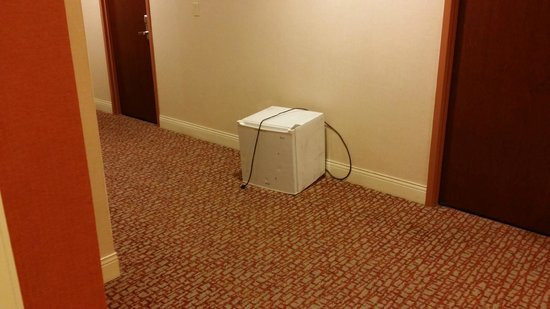Radisson Hotel Hauppauge-Long Island: Outside Guest Room