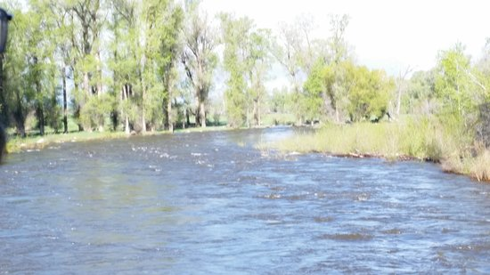 Holiday Inn Steamboat Springs: Yampa River in Steamboat