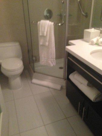 Staybridge Suites Times Square - New York City : Bathroom