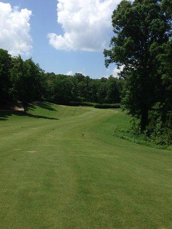 Barnsley Resort: golf