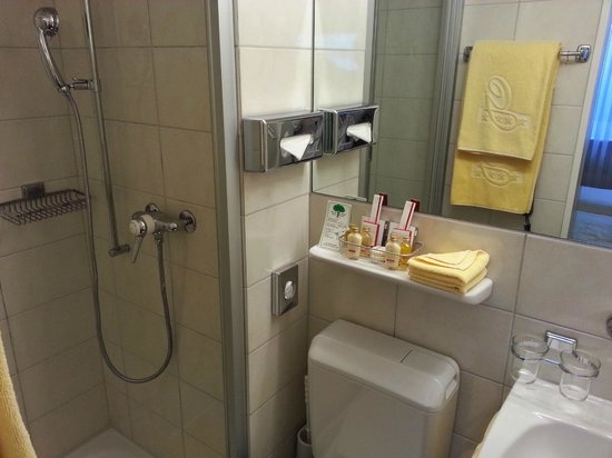 GAIA Hotel : bathroom 1 (shower)