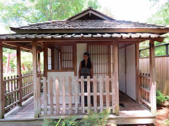 New Hanover County Arboretum: Japanese Garden Area