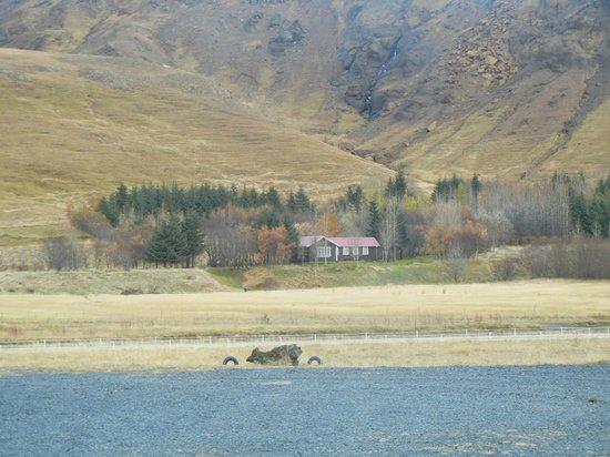 Alfasteinn Guesthouse- Day Tours: Scenery on horseback ride