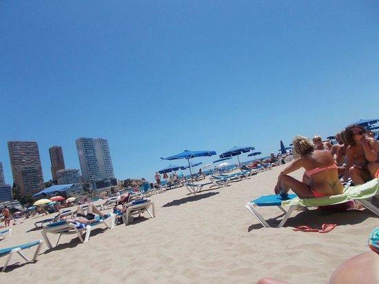 Apartamentos Levante Lux : Beach