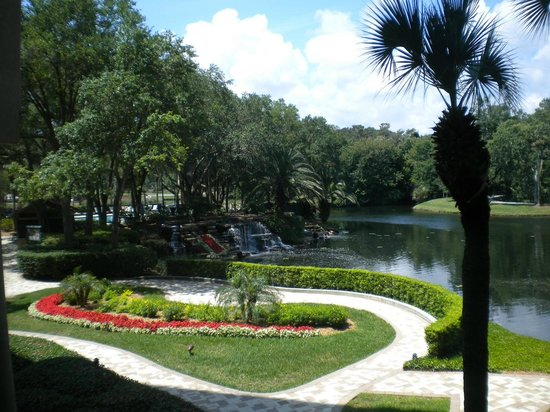 Sawgrass Marriott Golf Resort & Spa : View from the lobby