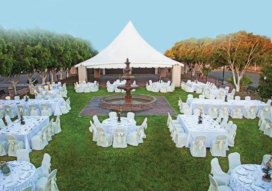 Jardin Picture Of Hotel Calafia Mexicali Tripadvisor