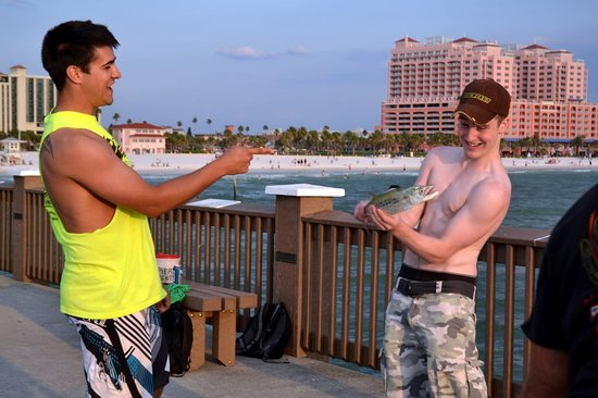 Pier 60 : Some young men from Ireland and their catch of a Spanish Mackerel