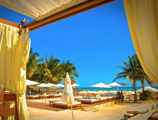 Kool Beach Club: Riviera Maya