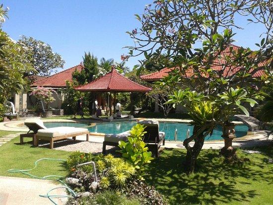 Sukun Bali Cottages: piscine de l hotel