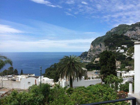 Hotel La Certosella: view