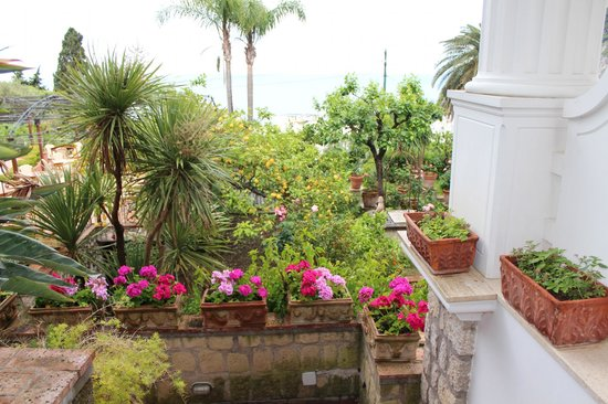 Hotel La Certosella: such beautiful grounds!