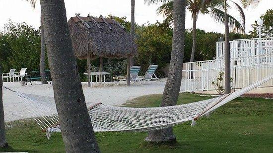 Kon-Tiki Resort : cove seating, hammocks and pool area to the right