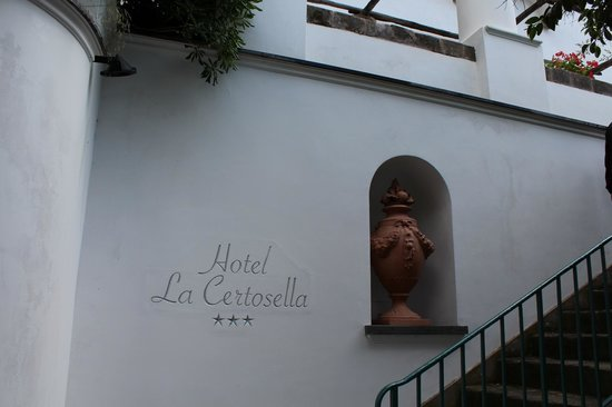 Hotel La Certosella: hotel