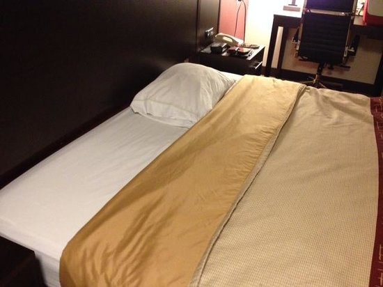 Red Roof Inn Chicago Hoffman Estates : 1 pillow provided with king-size bed