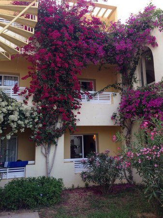 TUI MAGIC LIFE Penelope Beach: Hotel