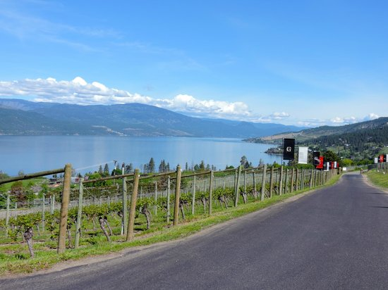 Lake Country Inn: View from Grey Monk winery